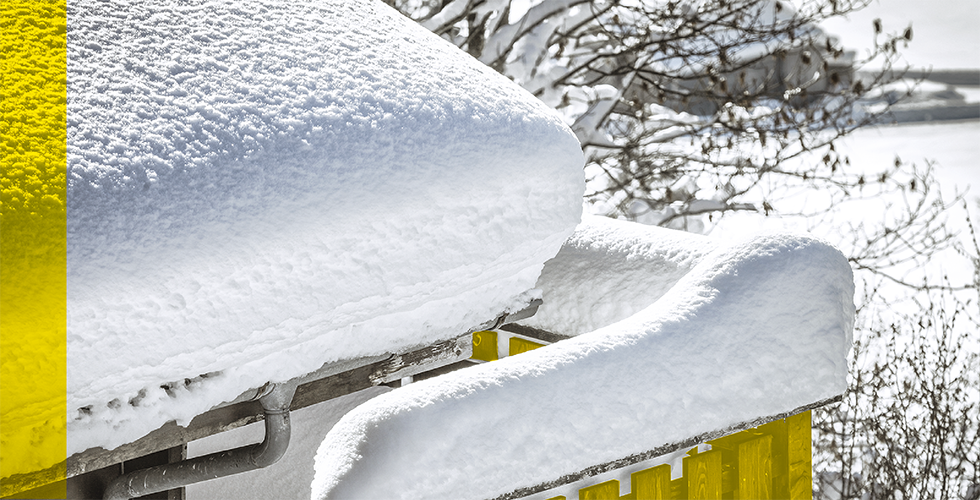49625 4169 int_00_1811_269953_blogue_snowpeeler980x500_1.png public://int_00_1811_269953_blogue_snowpeeler980x500_1.png image/png 1022477 1 1542745829 int_00_1811_269953_blogue_snowpeeler980x500_1.png image  Array Array Array Array   500 980